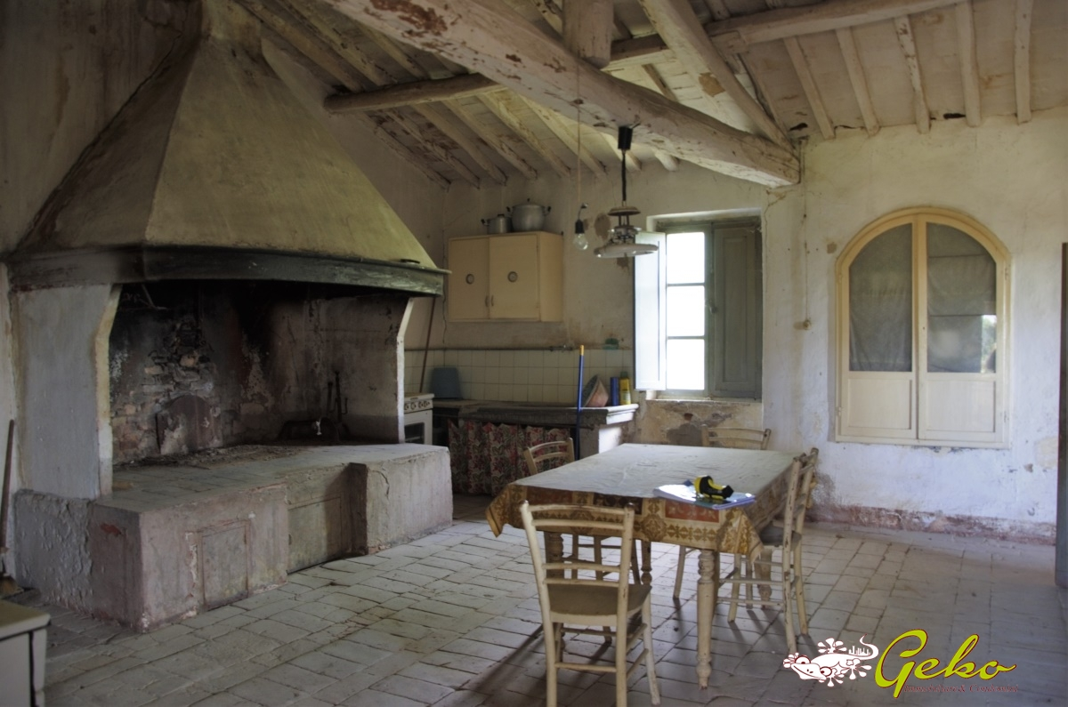 Vendita rustici e casali san gimignano colonica da for Case con grandi cucine in vendita