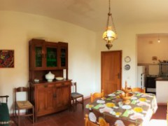 Rural house with land - 2 km far from Hostorical centre of San Gimignano - 4